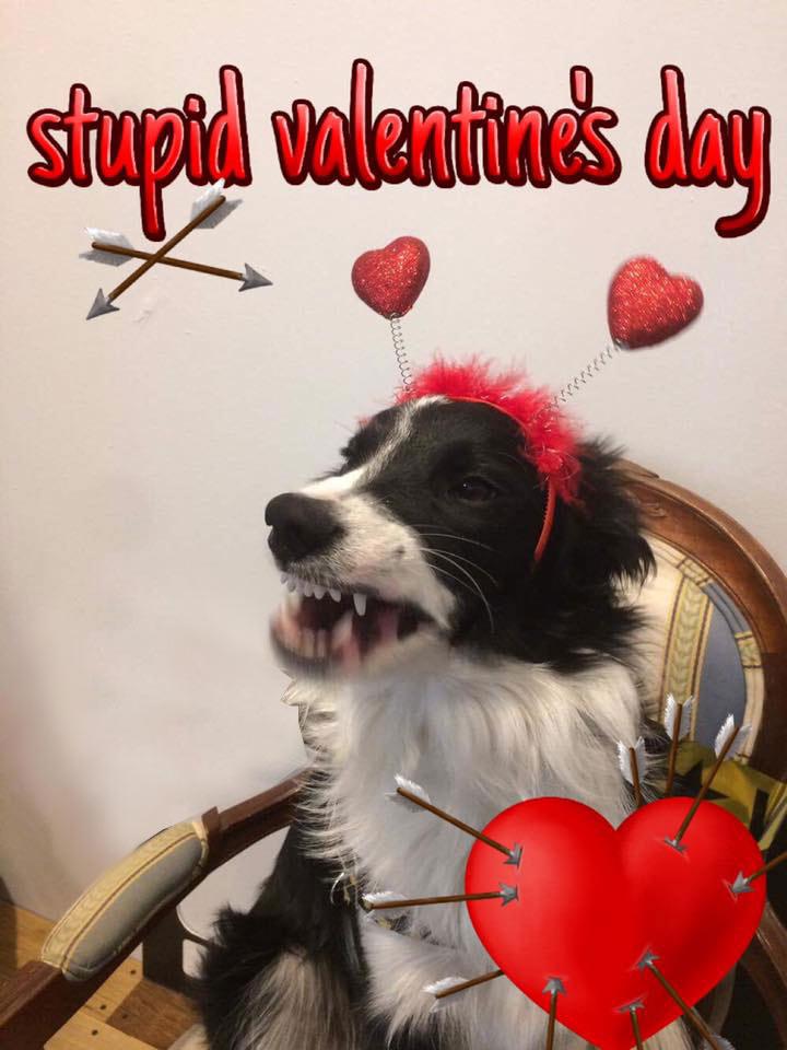 valentines day ruby